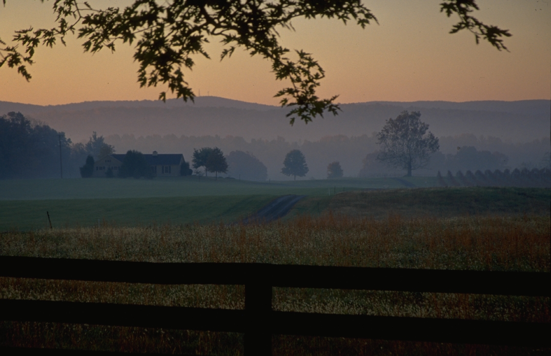 Scenery in Loudoun Country