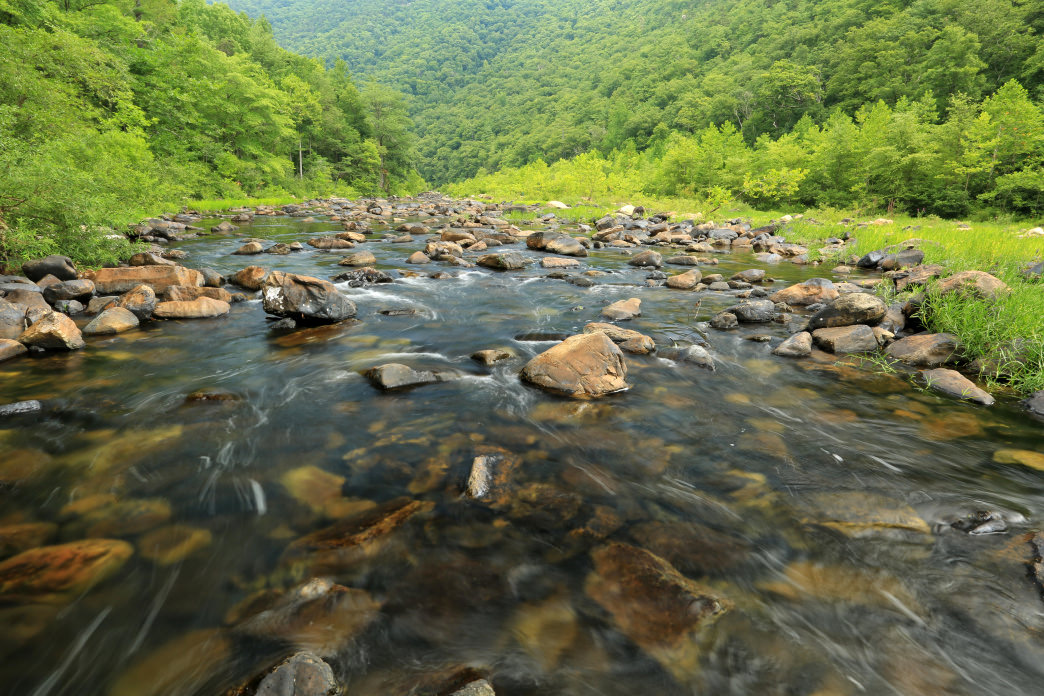 Stop at the Goshen Pass Natural Area Preserve for an eyeful of the breathtaking gorge.